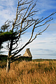 Ruins of a traditional irish cottage at idyllic landscape, Connemara, County Galway, west coast, Ireland, Europe