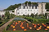 The Gardens, Chateau De Villandry, Indre-Et-Loire (37), France