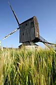 Windmill Near Wheat Fields, Eure-Et-Loir (28), France