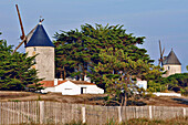 The Barbatre Mills, Isle Of Noirmoutier, Vendee (85), France