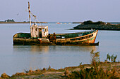 Boat Graveyard At The Entrance To The Port Of Noirmoutier, Ile De Noirmoutier, Vendee (85), France