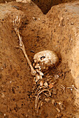 Preventive Archaeological Excavation Site In A Parcel Of The Roman Cemetary In Evreux By A Team From The National Institute Of Preventive Archaeological Excavations (Inrap). The Dig Has Uncovered Graves Containing A Mix Of Human And Horse Bones, Evreux