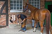 horse, smith fixes Horseshoe, farm house