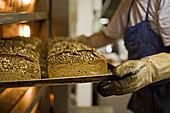 fresh loaves in Bundschuh bakery in Stöckendrebber, Hanover region, Lower Saxony, Germany