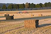 harvester, grain fields, Calenberger Land, northern Germany