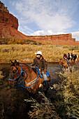 Horse riding, Torrey, Capitol Reef National Park, Utah, USA
