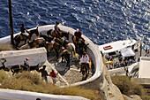 Tourists riding donkeys, Fira, island of Santorin, the Cyclades, Greece, Europe
