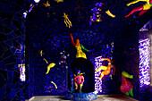 Niki de Saint Phalle grotto, Great Garden, Herrenhausen Gardens, Hanover, Lower Saxony, Germany, Europe