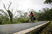 German woman cycling on a road in the rainforest, east coast of Taiwan, Republic of China, Taiwan, Asia