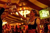 Inside a beer tent, Cannstatter Volksfest, Stuttgart, Baden-Wurttemberg, Germany
