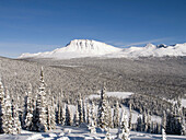 Alberta, Canada, Color, Colour, Forest, Horizontal, Jasper national park, Landscape, Mountain, Mountains, Ski, Skiing, Snow, White, Wilderness, Winter, World locations, K68-848387, agefotostock