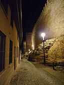 Muralla. Segovia. Castilla y León. España