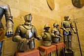 Armors in the Arms Room,  Alcazar fortress,  Segovia. Castilla-Leon,  Spain