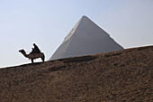 An Egyptian policeman sits astride a camel at the Pyramids of Giza,  Giza,  Cairo,  Egypt,  Africa,  with the Pyramid of Cephren / Khafre in the background