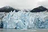 Sawyer Gletscher / Sawyer Glacier / Tracy Arm Fjord / Alaska,  USA
