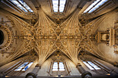 Star-shaped vault in the church vestry of the old monastery and hospital of San Marcos,  Leon. Castilla-Leon,  Spain