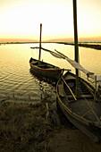 Old boats of sail La Albufera Natural Park,  Valencia,  Comunidad Valenciana,  Spain,  Europe