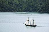The Spirit of New Zealand sailing through the Marlborough Sounds South Island,  New Zealand