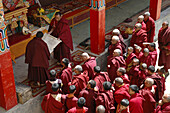 A crowd of Tibetan Buddhist monks watch the unrolling of a holy scroll Lama Yuru,  Ladakh,  India