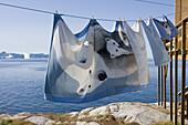Bed linen hanging on clothes line in front of icebergs of Ilulissat Kangerlua Isfjord, Ilulissat (Jakobshavn), Disko Bay, Kitaa, Greenland