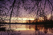 Dawn at lake Flacher, Mecklenburg lake district, Mecklenburg-Western Pomerania, Germany