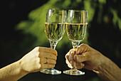 Raising the glasses in toast, Rhine river, Rhineland-Palatinate, Germany