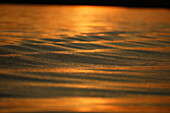 Water surface in the evening light, Lake Chiemsee, Chiemgau, Bavaria, Germany