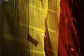 Prayer flags at Pemayangtse monastery, Sikkim, Himalaya, Northern India, Asia
