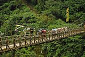 Suspension bridge with prayer flags, Trek towards Gocha La in Kangchenjunga region, Sikkim, Himalaya, Northern India, Asia