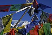 Colourful prayer flags in front of blue sky at Dzongri La, Trek towards Gocha La in Kangchenjunga region, Sikkim, Himalaya, Northern India, Asia