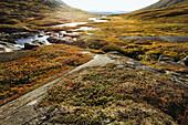 Flusslandschaft im Storengdalen im Herbst, Sjurfjellet Saltar, Norwegen, Skandinavien, Europa