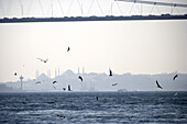 Bridge over the Bosporus, Skyline of the historic old town of Istanbul with Hagia Sofia, Istanbul, Turkey