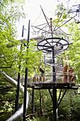 Treetop walk, biosphere house, Fischbach bei Dahn, Palatine Forest, Rhineland-Palentine, Germany