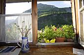 View out of kitchen window at Laufbichl Alpe, Hintersteiner Tal, Bad Hindelang, Allgau, Swabia, Bavaria, Germany