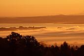 View over Lake Chiemsee, Chiemgau, Bavaria, Germany