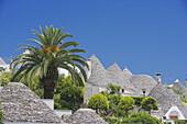 Alberobello, Trullis, Puglia, Italy
