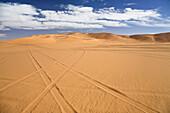 Car tracks in libyan desert, Libya, Sahara, North AfricaSahara, North Africa