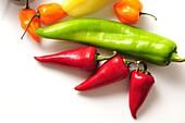Chili peppers--Anaheim long, light green, Red Fresno red, Habanero orange, Yellow Hots light yellow