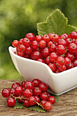 Red currants  Ribes rubrum)