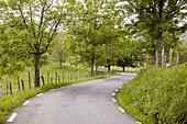 Country road, Elosua, Azkoitia, Guipuzcoa, Basque Country, Spain