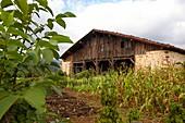 Igartubeiti Farmhouse Museum, Ezkio-Itsaso, Guipuzcoa, Basque Country, Spain