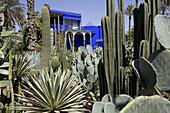 The Blue House in Marjorelle Garden, Marrakech, Morocco