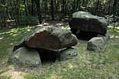 D-Meppen, Ems, Hase, Hasetal, Emsland, Niedersachsen, D-Meppen-Apeldorn, Steinzeit, Megalithgrab, Grosssteingrab in Apeldorn auch genannt ´Der steinerne Schluessel´, D-Meppen, Ems, Hase, Hase Valley, Emsland, Lower Saxony, D-Meppen-Apeldorn, Stone Age, me
