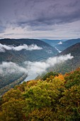 USA, West Virginia, Beckley-area, Grandview, New River Gorge National River, Grandview overlook, autumn, dawn