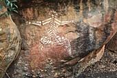 peinture aborigene Nourlangie rock  peinture rupestre Aboriginal Rock Art  Nourlangie  Kakadu Territoire du nord  Australie Nabulwinjbulwinj  Dangerous spirit peinture aborigene