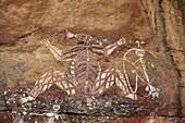 peinture aborigene Nourlangie rock  peinture rupestre Aboriginal Rock Art  Nourlangie  Kakadu Territoire du nord  Australie Namarndjolg and his sister broke the incest and became Ginga the great saltwater crocodile peinture aborigene