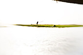 African man in a boat on the river Niger, Mopti, Mali, Africa