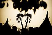 Backlit huts of a Dogon village, La Falaise de Bandiagara, Mali, Africa