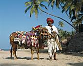 Anjuna Market musician, Goa, India