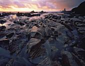 Eroded coastal platform Paparoa National Park New Zealand